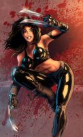 X-23, October 2009 by timothylaskey