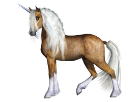 Unicorn 03 PNG Stock by Roys-Art