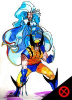 Storm and Wolverine by xxxphx