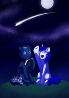 Comm: Shooting star by MylittleSheepy