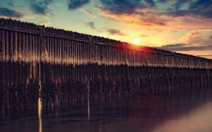 The Wall by frestro79