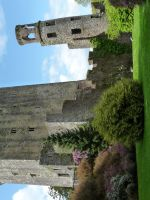 castle in Blarney 13 by indeed-stock