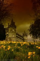 once upon a time... by photo-earth