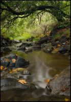 Stenner Creek II by twelvemotion