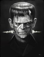 Frankenstein's Monster by RodgerPister