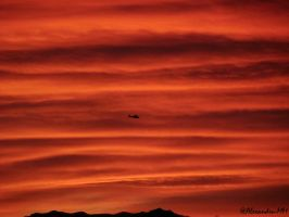 Helicopter in sunset by Alexandru-MM