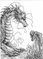 Dragon and Warrior by EUDETENIS
