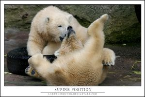 Supine position by AF--Photography