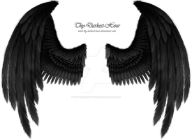Winged Fantasy Black-Gray - Premium PSD Download by Thy-Darkest-Hour