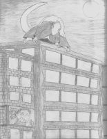 Wildy on Rooftop by Wildy71090