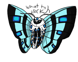 CotW #11: Leopard Mottthhhh by AuroraL1GHT