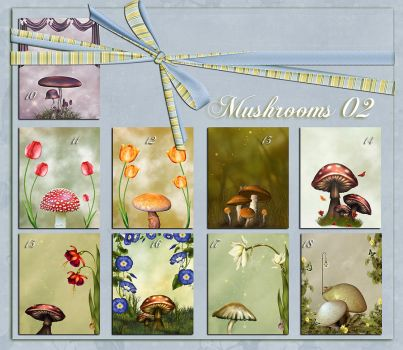 Backgrounds Mushrooms 02 by flaviacabral