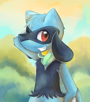 Kyle the Riolu by kurisu-leon