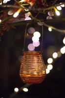 bokeh by wasted49