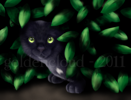 Ravenpaw's Hiding Place by Goldencloud