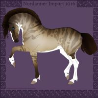 1016 Group Horse Import by Cloudrunner64