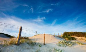The Tresspassing Dune by hougaard
