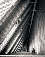 The Geometry of Hong Kong by Richteralan