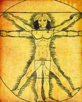 Vitruvian Man by nickini