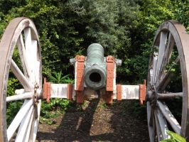 Cannon by Rickdaos