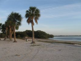 212 Green Key Beach by crazygardener