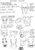 Animal Head Patterns by KataabaIzuua