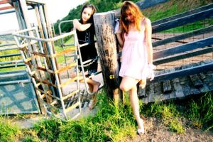 On the Cow farm by ambie-bambi
