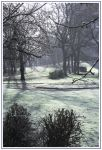 another winter pic by autumn-ice
