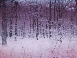 pink snow by LadyLennox