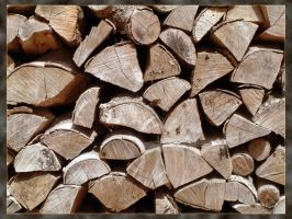 The Wood Pile by unclejuice