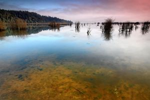 Nisqually Basin #3 by FrenchieSmalls