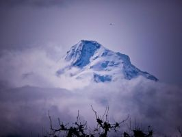 Mt. Hood by LAPoetry-n-Photo
