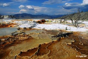 Mammoth Hot Springs 0443 by CrystalAnnPhotos