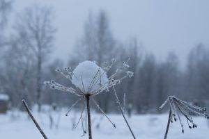 The ball of snow by Ilman-Lintu