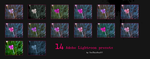 Lightroom flower presets by UseThisStuff