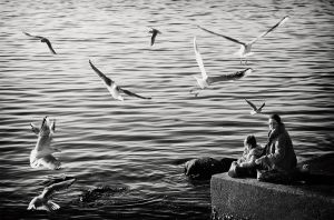 Childhood between Seagulls by Dfujevec