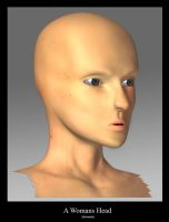 A womans face - 3D by DuffMan256