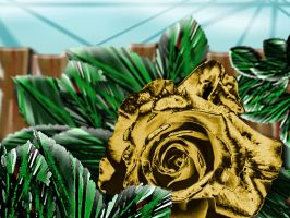Golden Rose by shadorma