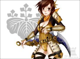 nene in Samurai Warriors 3 by Draven4157