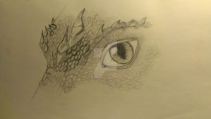 Dragon Eye (first, small try) by Silberfrost