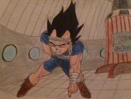 Vegeta's leisure Activity by vegeta-goku