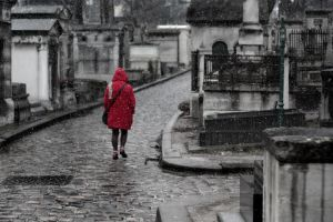 Snow on Pere Lachaise 2 by MadameOreille