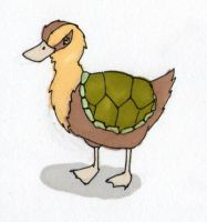 Turtle Duck by Cuccoteaser