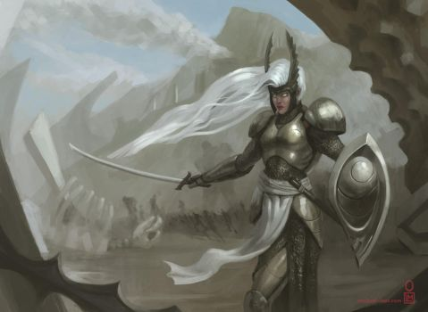 Silver Valkyrie by MichaelLoos