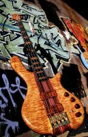 May Custom Basses by krystledawn