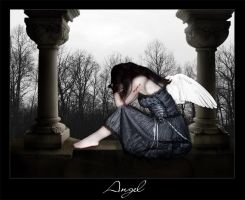 .: Angel :. by fofoleti