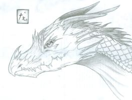 Portrait of a Dragon by Whiplash3