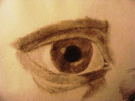 Study of Eye by ElizabethWillett
