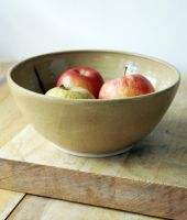Large fruit bowl by scarlet1800