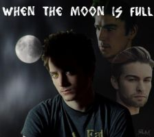When The Moon Is Full Poster by Flame22